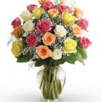 avasflowers-two-dozen-assorted-colored-roses-farm-fresh_prodbig